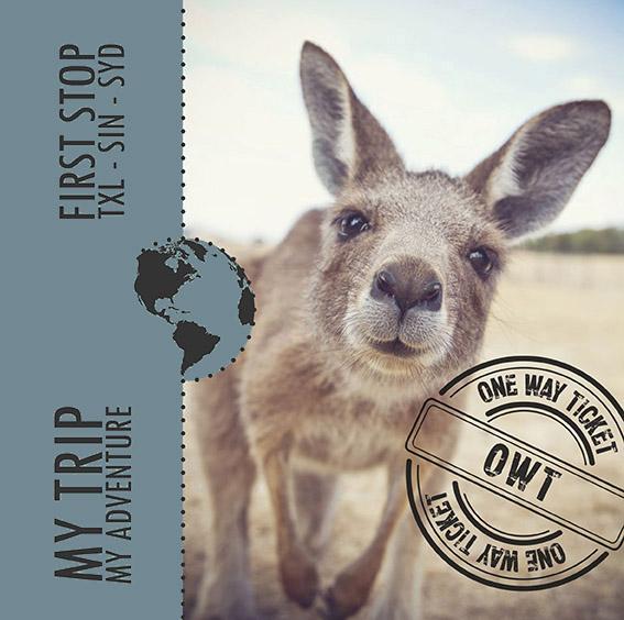 Instagram Post Känguru - Social Media